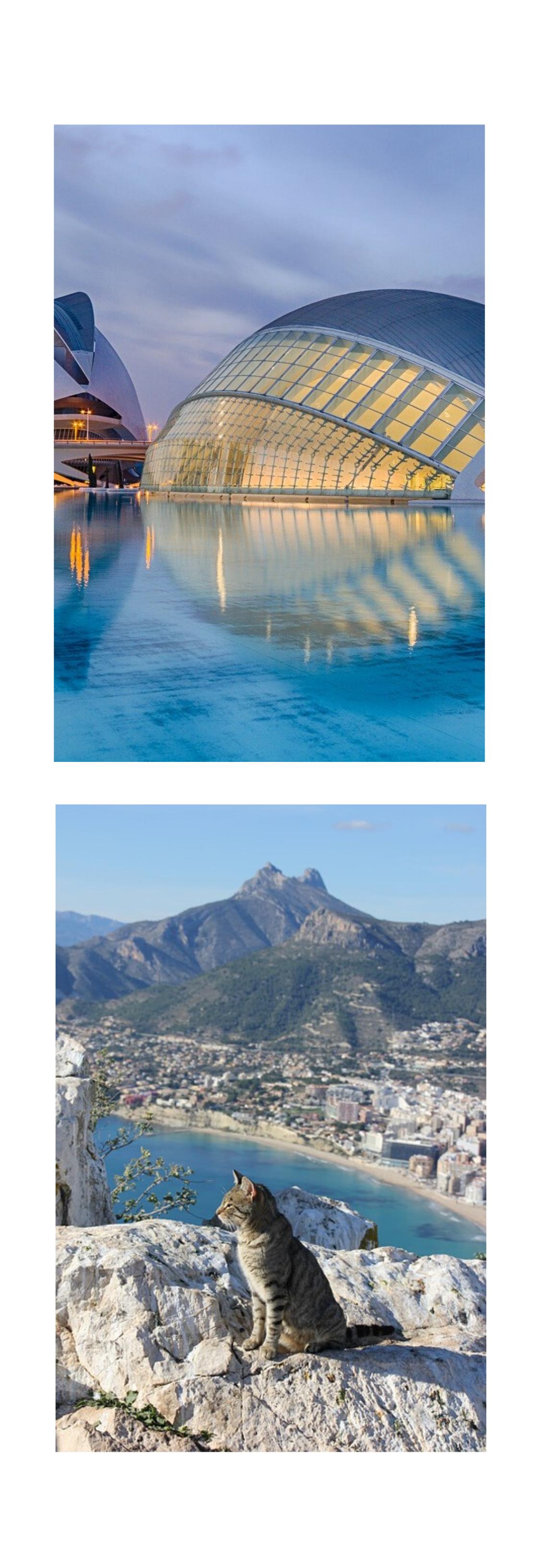 Información turística de la Comunidad Valenciana